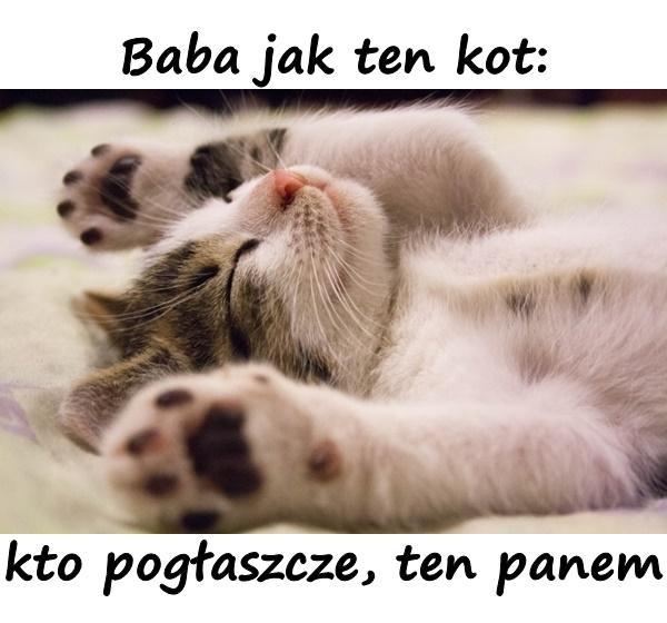 Baba jak ten kot: kto pogłaszcze, ten panem