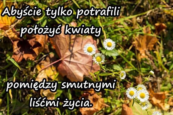 Abyście tylko potrafili położyć kwiaty pomiędzy smutnymi liśćmi życia.