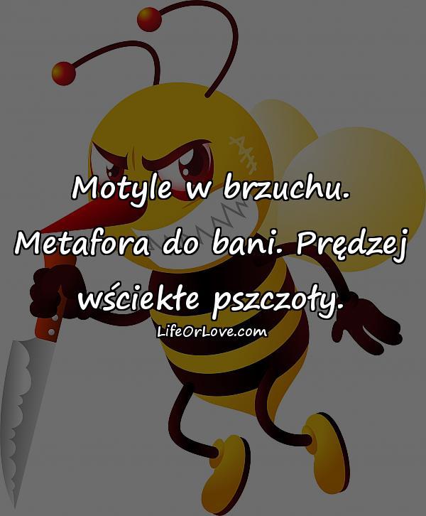 Motyle w brzuchu. Metafora do bani. Prędzej wściekłe pszczoły.