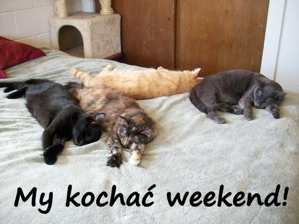 My kochać weekend!