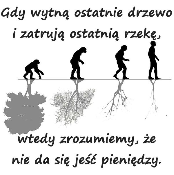 Gdy wytną ostatnie drzewo i zatrują ostatnią rzekę, wtedy zrozumiemy, że nie da się jeść pieniędzy.