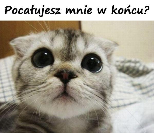 Pocałujesz mnie w końcu?