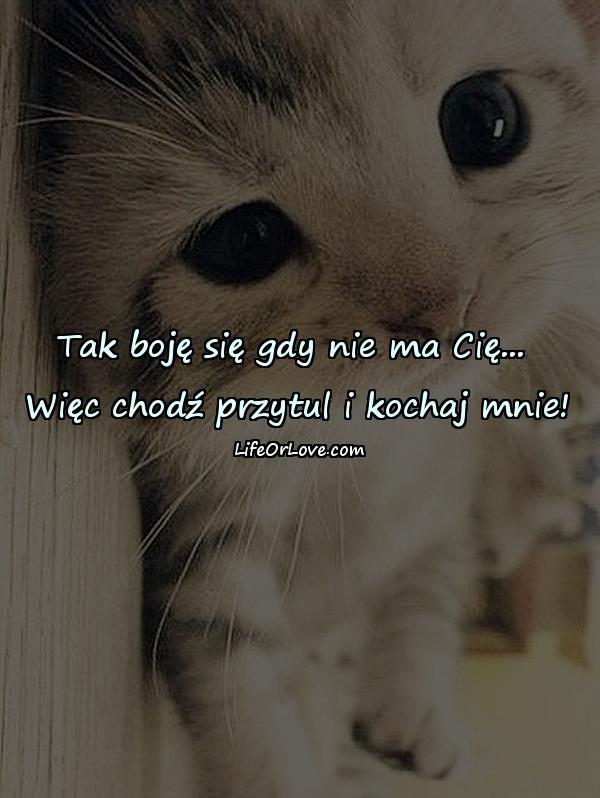 Tak boję się gdy nie ma Cię... Więc chodź przytul i kochaj mnie!