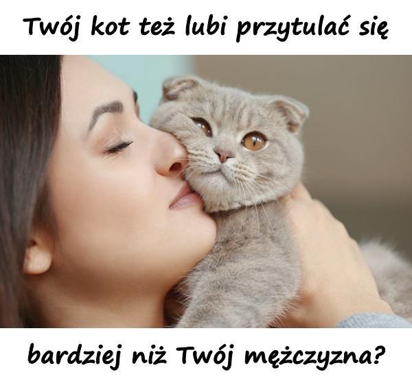 Twój kot też lubi przytulać się bardziej niż Twój mężczyzna?